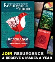 Resurgence & Ecologist (magazine): ข่าวและการปรับปรุงเกี่ยวกับประเด็นด้านสิ่งแวดล้อม